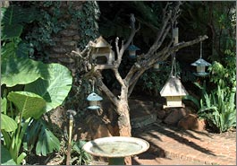 Margarets Place garden bird feeder